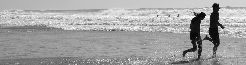 Contactez Son Of The Beach